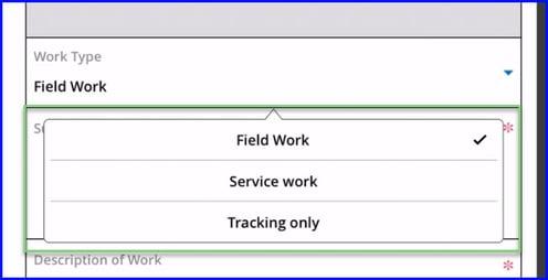 Work Type